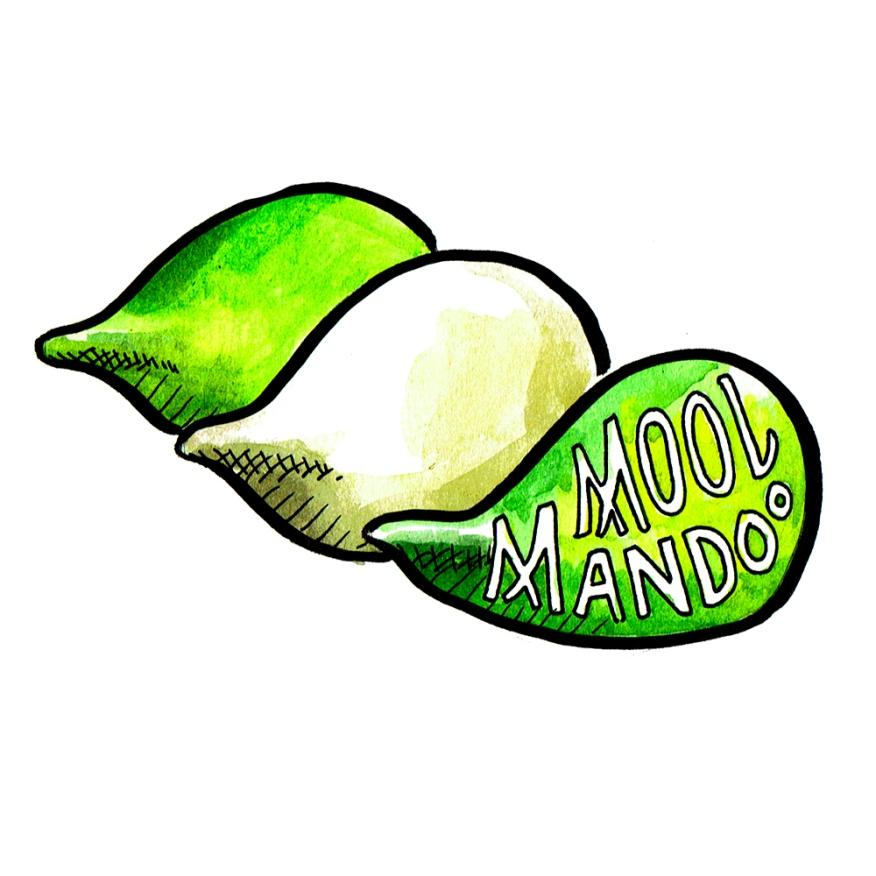 mool-mandoo