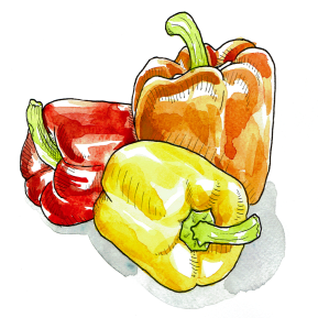 2-Peppers-White-Background-(For-Web)