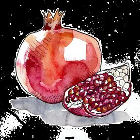 3-Pomegranate-White-Background-(For-Web)