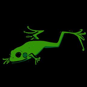 Flying Fish Color_Bullfrog
